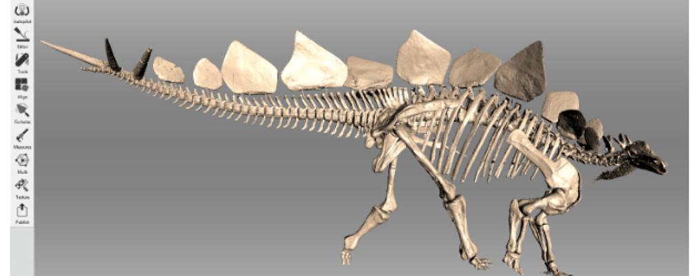3D Scanning a Stegosaurus
